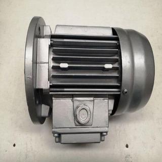 Motor trifasico 250W